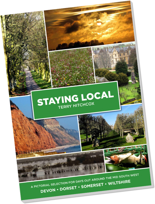 Staying Local